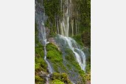 Wasserkaskaden im Moos