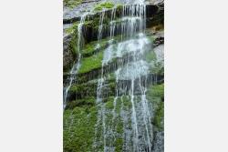 Wasserrinnsale im Fels