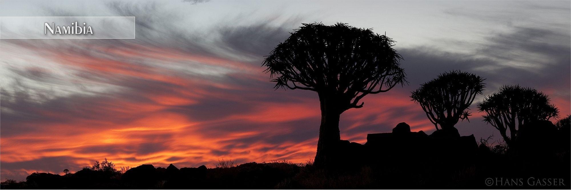 Bilder als Wandbild oder Küchenrückwand aus Namibia